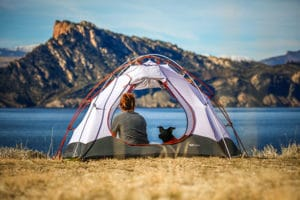 girl and dog camping in a tent
